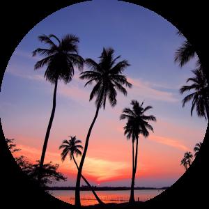 Traumreisefabrik Sri Lanka